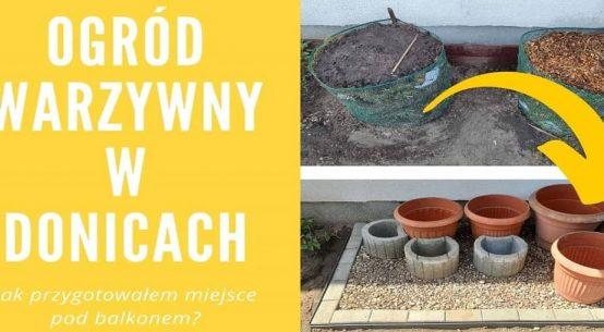 Ogród warzywny w donicach